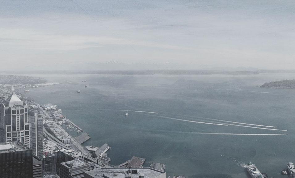 The Harbor